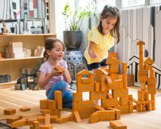 100 Piece Large Unit Bricks Set Unit Bricks | The Discovery Source